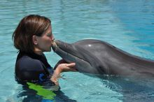 Graduate Student Amanda Ardente with dolphin