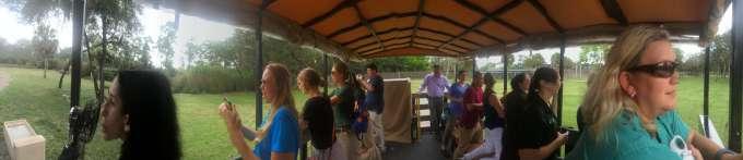 Disney's Animal Kingdon trip.